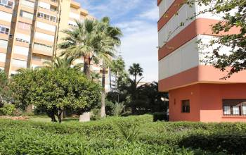 Torrox-Costa,Malaga,Andalucia,Spain,Commercial premises,3566