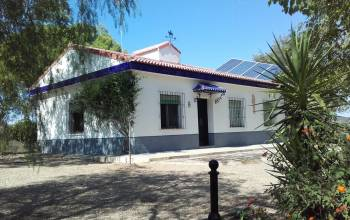 Sevilla, El Ronquillo, Andalucia, Spain 41880, 3 Bedrooms Bedrooms, ,1 BathroomBathrooms,Rural properties,For sale,3927