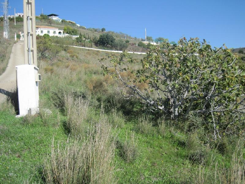 Motril,Granada,Andalucia,Spain,1 BathroomBathrooms,Plots,GREN: 2803,2803
